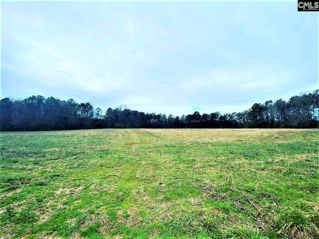 0 Hwy 495, Pomaria, SC 29126 (MLS #512172) :: The Olivia Cooley Group at Keller Williams Realty