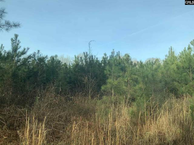 8305 Jeffries Highway, Walterboro, SC 29488 (MLS #512178) :: Home Advantage Realty, LLC