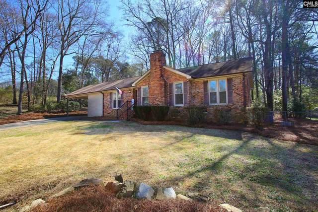 220 Point South Lane, Lexington, SC 29073 (MLS #512273) :: EXIT Real Estate Consultants