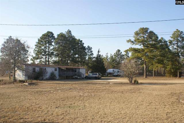 277 Downey Drive, Pelion, SC 29123 (MLS #512304) :: Resource Realty Group