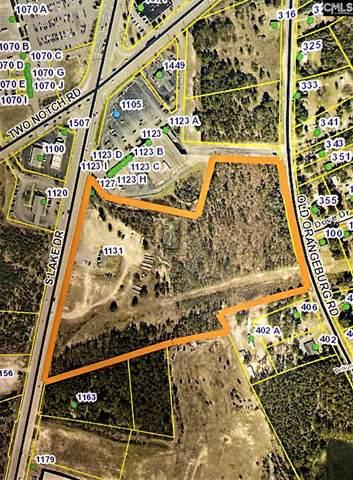 1131 South Lake Drive, Lexington, SC 29073 (MLS #512497) :: EXIT Real Estate Consultants