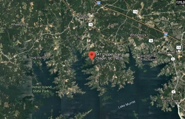 641 Clipper Trail, Chapin, SC 29036 (MLS #512706) :: Disharoon Homes