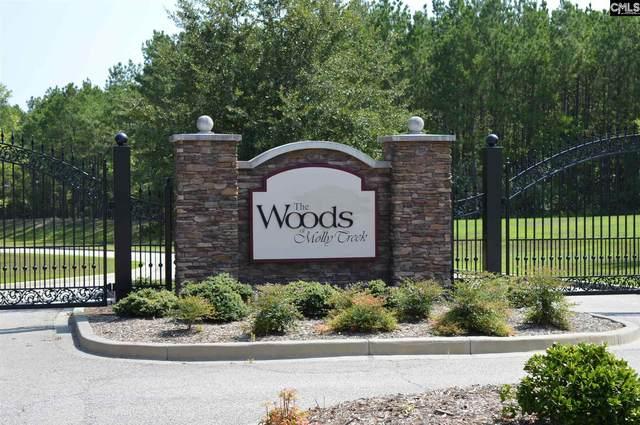 117 Retreat Way, Ridgeway, SC 29130 (MLS #512760) :: EXIT Real Estate Consultants