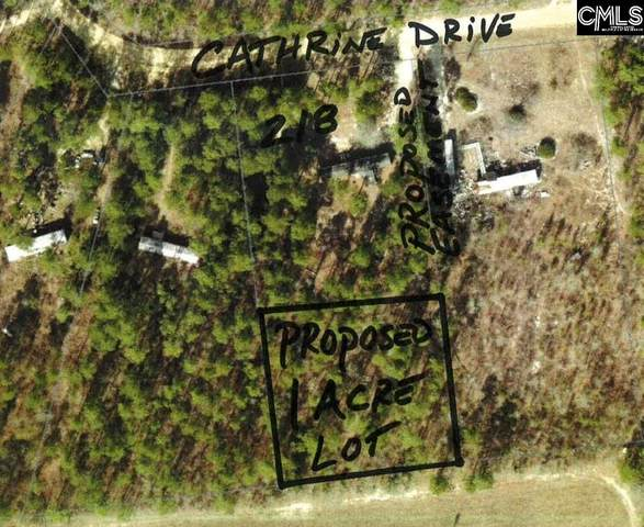 Catherine Drive, Pelion, SC 29123 (MLS #512983) :: Resource Realty Group