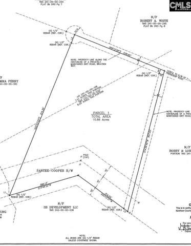 61 Brayden Way 4B, Camden, SC 29020 (MLS #513045) :: Disharoon Homes