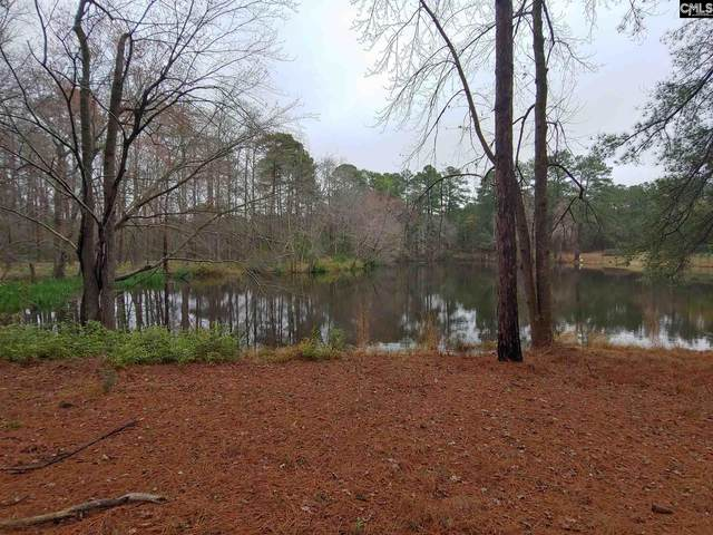 00 Lenore Drive, West Columbia, SC 29172 (MLS #513132) :: Loveless & Yarborough Real Estate