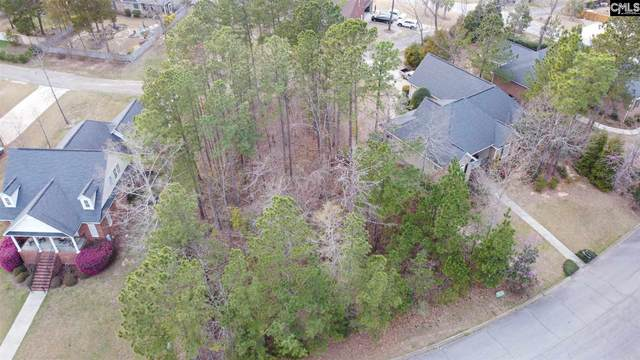 133 Night Harbor Drive #273, Chapin, SC 29036 (MLS #513164) :: EXIT Real Estate Consultants