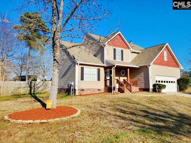 204 Stoney Pointe, Chapin, SC 29036 (MLS #513172) :: Fabulous Aiken Homes