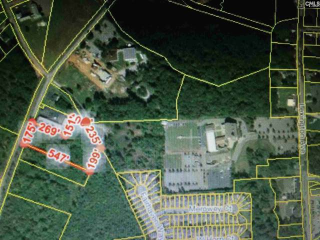 0 Amicks Ferry Road, Chapin, SC 29036 (MLS #513440) :: EXIT Real Estate Consultants