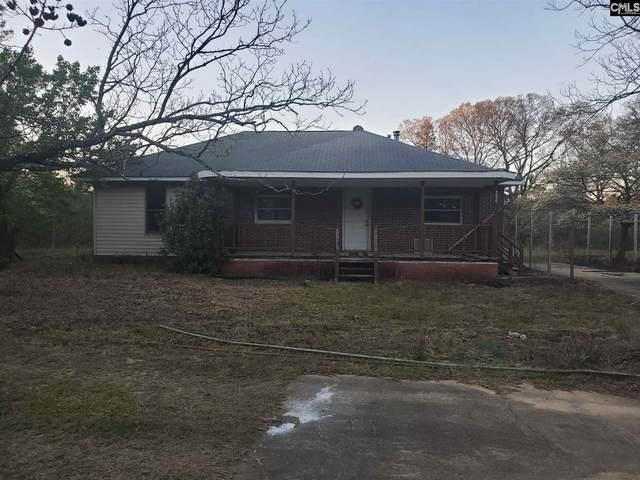 256 Sems Road, Gaston, SC 29053 (MLS #513863) :: EXIT Real Estate Consultants