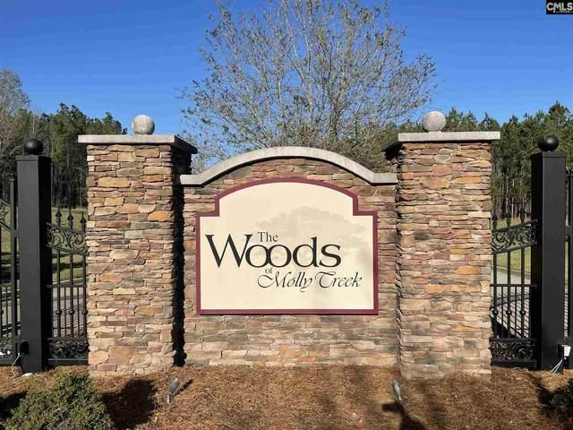 Lot 76 Retreat Way #76, Ridgeway, SC 29130 (MLS #513973) :: EXIT Real Estate Consultants