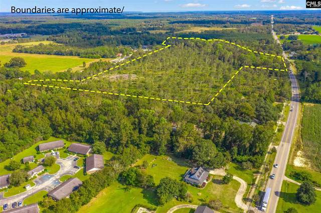 0 E Hwy 6 Highway, Elloree, SC 29047 (MLS #514027) :: The Olivia Cooley Group at Keller Williams Realty