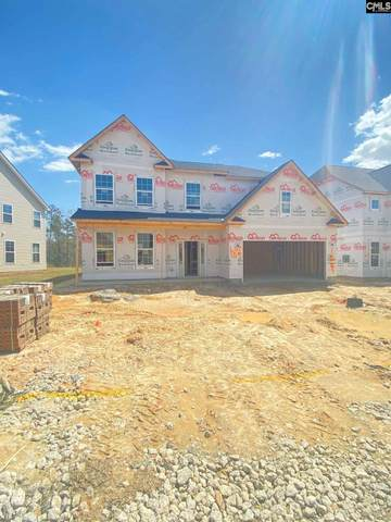 1025 Turtle Stone Road, Blythewood, SC 29016 (MLS #514099) :: EXIT Real Estate Consultants