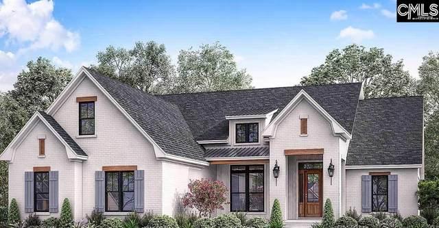 365 Old Chapin Road, Lexington, SC 29072 (MLS #514395) :: EXIT Real Estate Consultants