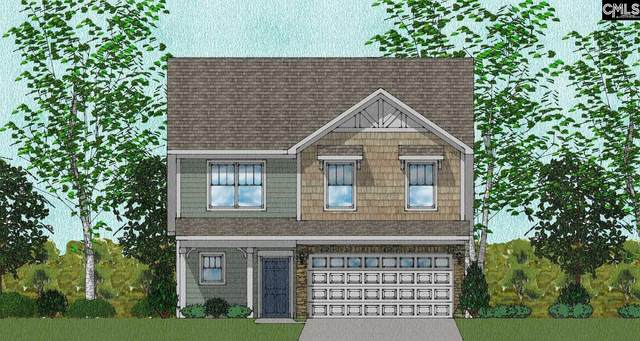 928 Bergenfield Lane 117, Chapin, SC 29036 (MLS #514480) :: EXIT Real Estate Consultants