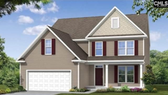 320 Brenthaven Drive, Chapin, SC 29036 (MLS #514600) :: Disharoon Homes