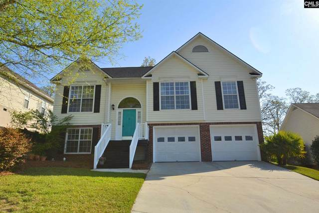 6 Beech Branch Court, Irmo, SC 29063 (MLS #514611) :: EXIT Real Estate Consultants