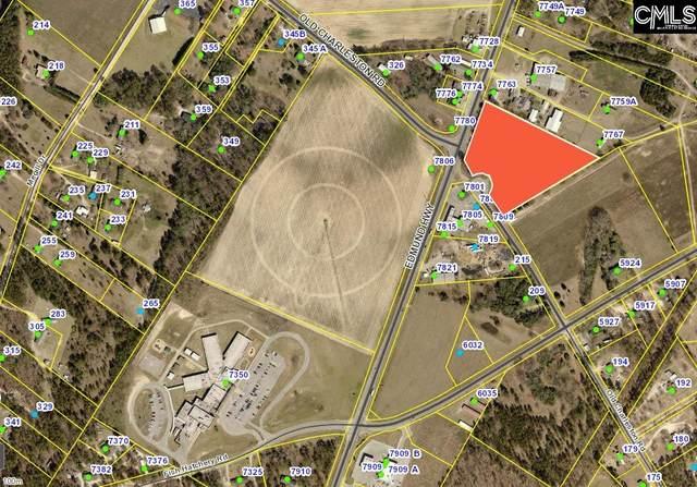 0 Old Charleston Road, Pelion, SC 29123 (MLS #514897) :: NextHome Specialists