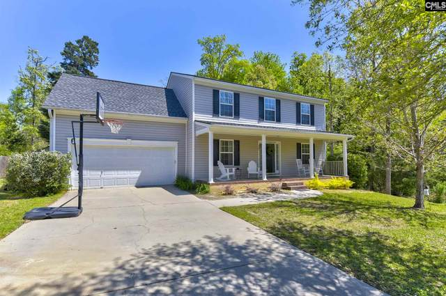 321 Foxport Drive, Chapin, SC 29036 (MLS #514906) :: The Olivia Cooley Group at Keller Williams Realty