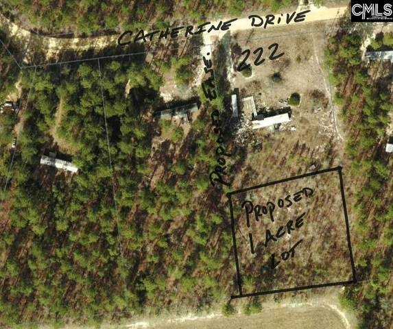 222 Catherine Drive, Pelion, SC 29123 (MLS #514911) :: The Olivia Cooley Group at Keller Williams Realty