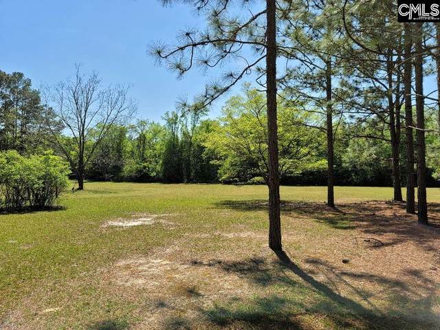 Platt Springs Road, Lexington, SC 29073 (MLS #514937) :: The Latimore Group