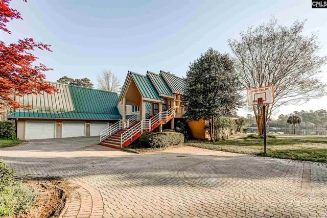 223 Tilden Point Circle, Chapin, SC 29036 (MLS #514940) :: Resource Realty Group