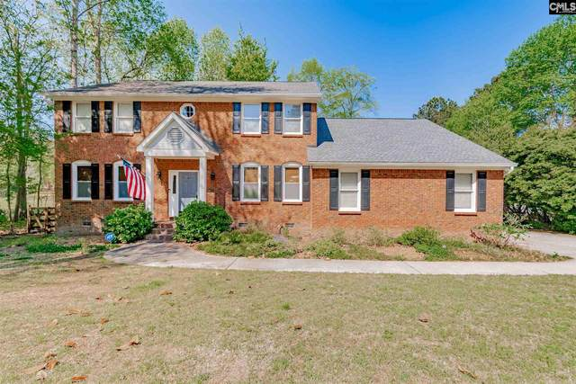 224 Springwater Drive, Columbia, SC 29223 (MLS #514963) :: The Olivia Cooley Group at Keller Williams Realty