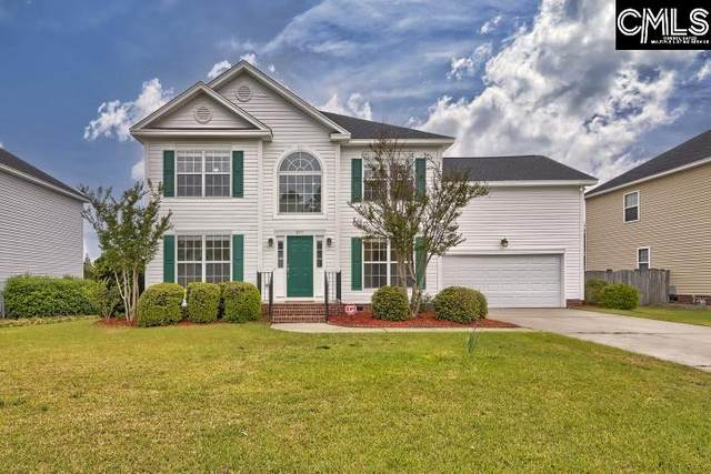 217 Branchview Drive, Columbia, SC 29229 (MLS #515262) :: EXIT Real Estate Consultants