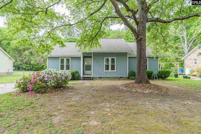 313 Chapelwhite Road, Irmo, SC 29063 (MLS #515425) :: Resource Realty Group