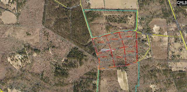 Parcel 6 Dream Road, Wagener, SC 29164 (MLS #515740) :: EXIT Real Estate Consultants