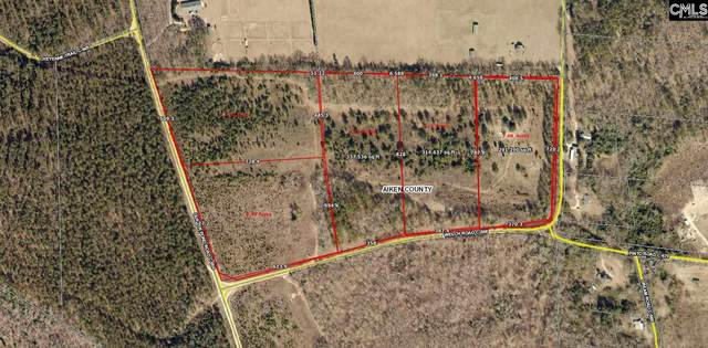 Parcel 1 Gunter Pond/Welch Road, Wagener, SC 29164 (MLS #515741) :: EXIT Real Estate Consultants