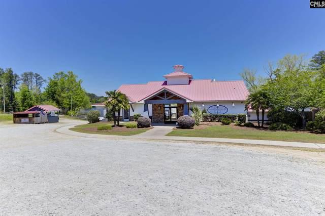 101 Sandalwood Road, Leesville, SC 29070 (MLS #515787) :: The Olivia Cooley Group at Keller Williams Realty