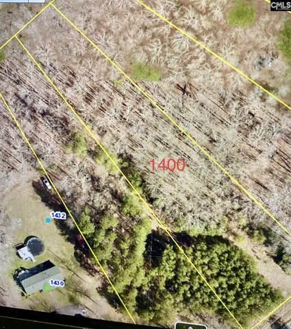 1400 Dreher Island Road, Chapin, SC 29036 (MLS #516028) :: The Shumpert Group