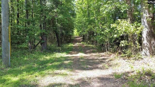 3 Mi E Frye Road, Lexington, SC 29072 (MLS #516209) :: NextHome Specialists