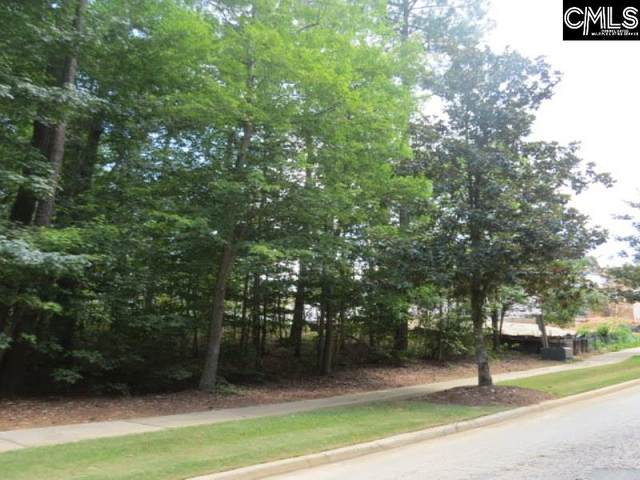 2 Golden Spur Lane #32, Blythewood, SC 29016 (MLS #516362) :: Gaymon Realty Group