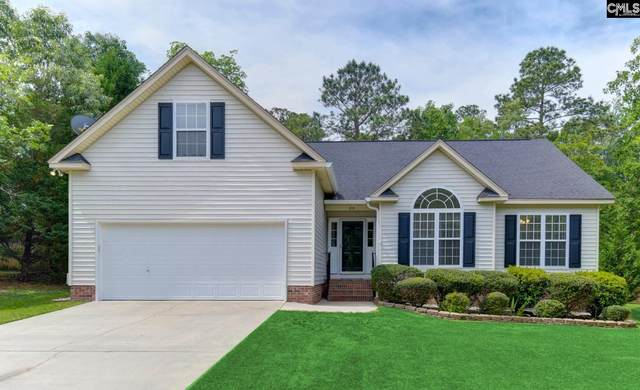 210 Hodson Hall Drive, Columbia, SC 29229 (MLS #516632) :: EXIT Real Estate Consultants