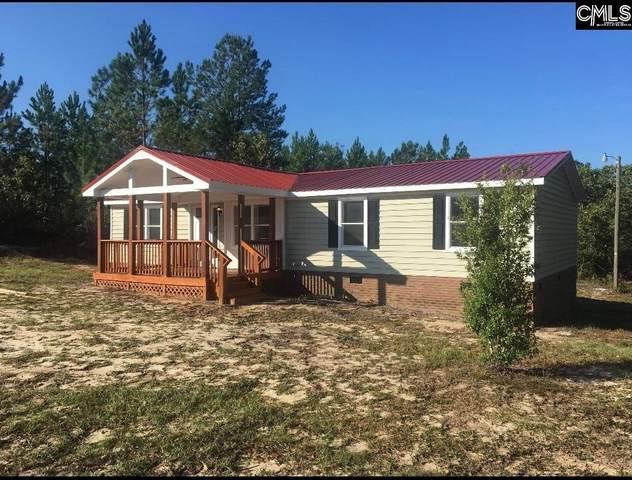 667 Boy Scout, Gaston, SC 29053 (MLS #516667) :: Home Advantage Realty, LLC