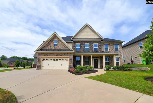 234 Indigo Hills Drive, Chapin, SC 29036 (MLS #516676) :: Home Advantage Realty, LLC