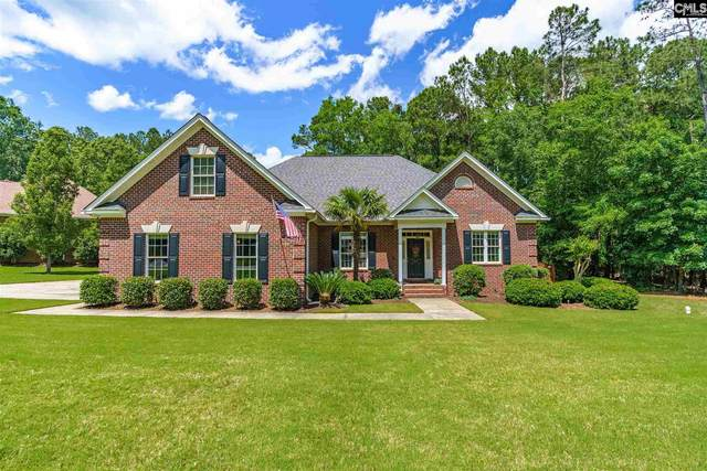 515 Harborview Point, Chapin, SC 29036 (MLS #516693) :: Metro Realty Group