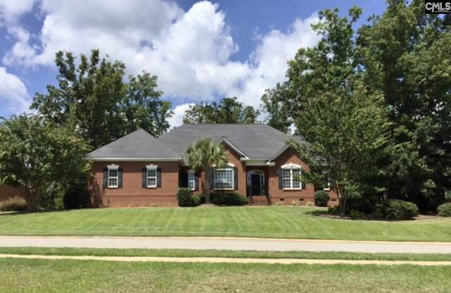 305 Sienna Drive, Chapin, SC 29036 (MLS #516754) :: Home Advantage Realty, LLC