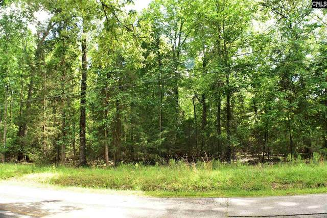945 Indian Fork Road, Chapin, SC 29036 (MLS #516786) :: Home Advantage Realty, LLC
