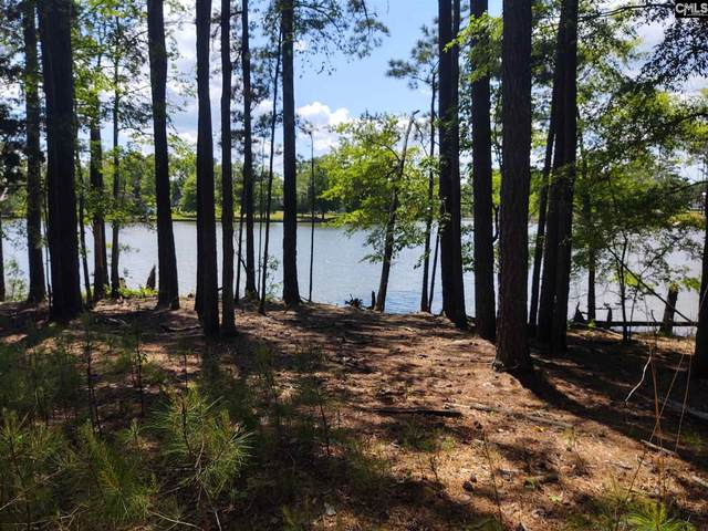 Lot 2B Retreat Way, Ridgeway, SC 29130 (MLS #516840) :: Home Advantage Realty, LLC