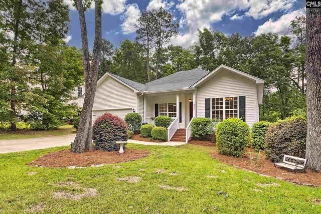 221 Caro Lane, Chapin, SC 29036 (MLS #516955) :: Loveless & Yarborough Real Estate
