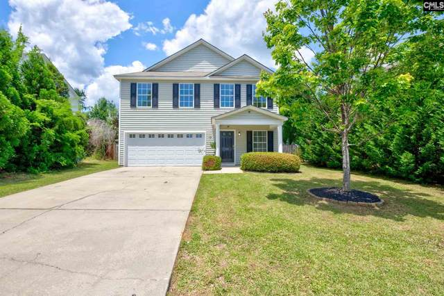 149 Wingspan Way, Chapin, SC 29036 (MLS #517259) :: EXIT Real Estate Consultants