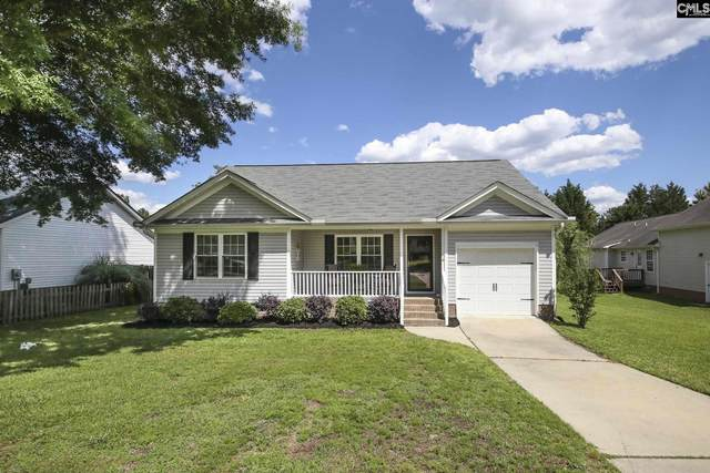 228 Shipyard Court, Chapin, SC 29036 (MLS #517291) :: Home Advantage Realty, LLC
