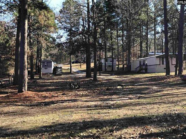 137 Treemount Lane, Gaston, SC 29053 (MLS #517325) :: EXIT Real Estate Consultants