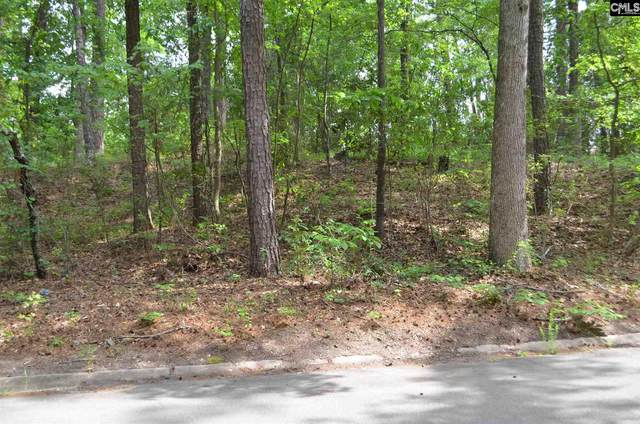 9526 Commonwealth Boulevard Lot D 16, Columbia, SC 29209 (MLS #517349) :: EXIT Real Estate Consultants