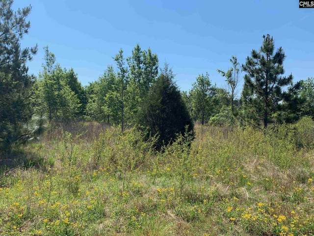 0 Two Notch Road #2, Gilbert, SC 29054 (MLS #517431) :: EXIT Real Estate Consultants