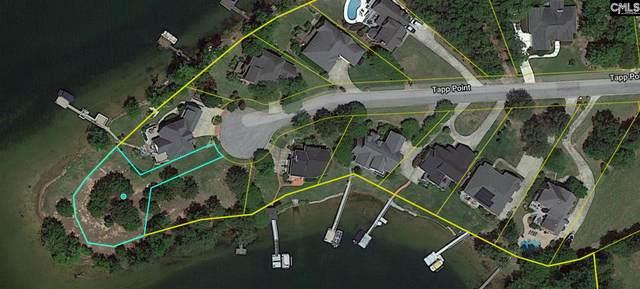 125 Tapp Point, Chapin, SC 29036 (MLS #517770) :: Disharoon Homes