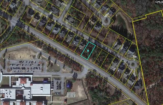 256 Belle Ridge Road #10, Elgin, SC 29045 (MLS #517949) :: The Latimore Group